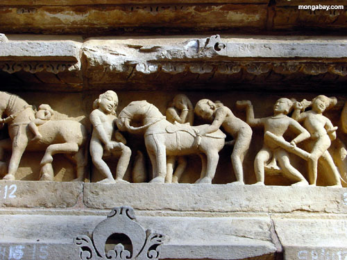 Kama Sutra Carvings (India)